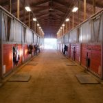 Barns and Stables Pest Control